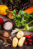 Raw vegetables with spices Royalty Free Stock Images