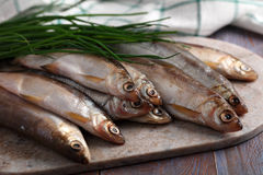 Raw vendace Stock Photography
