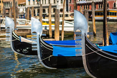 Raw of Venetians gondolas Royalty Free Stock Photography
