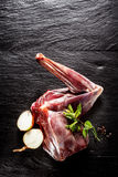 Raw Venison Haunch Seasoned with Herbs and Onion Stock Photos