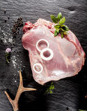 Raw Venison Roast Seasoned with Herbs and Spices Royalty Free Stock Photography