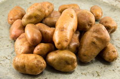 Raw washed potatoes closeup Stock Photography