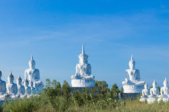 raw of white buddha status on blue sky background Royalty Free Stock Photography