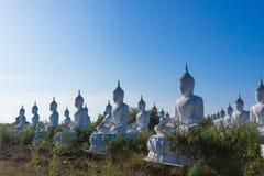 raw of white buddha status on blue sky background Stock Images