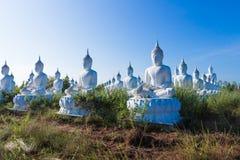 raw of white buddha status on blue sky background Royalty Free Stock Photography