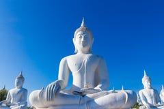 raw of white buddha status on blue sky background Stock Photos