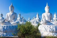 Raw of white buddha status on blue sky background Royalty Free Stock Photos