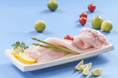 Raw white fish fillets with tomatoes and fresh oregano & Lemon slice Stock Photos