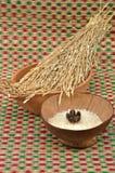 Raw white jasmine rice with paddy rice Stock Photography