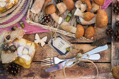 Raw white mushrooms, pine cones and decorative tag Royalty Free Stock Photos