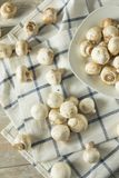 Raw White Organic Baby Button Mushrooms. Ready to Cook Royalty Free Stock Image