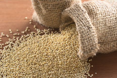 Raw White Quinoa Stock Photography