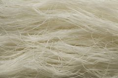 Raw white rice noodles Royalty Free Stock Images