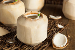 Raw White Young Coconut Drink Royalty Free Stock Photography