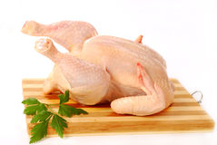 Raw whole chicken Royalty Free Stock Image