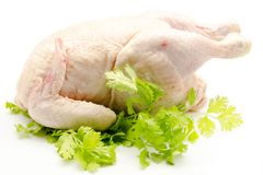 Raw Whole Chicken Royalty Free Stock Photography
