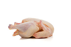 Raw, whole chicken on white Stock Images