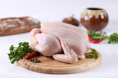 Raw whole hen chicken Royalty Free Stock Images