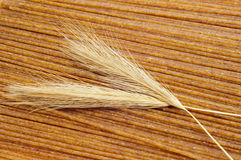 Raw whole wheat spaghetti Royalty Free Stock Photo