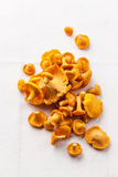 Raw wild mushrooms chanterelle Royalty Free Stock Images