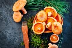 Raw Wild Saffron Milk Cap Mushrooms On Dark Old Rustic Background. Lactarius Deliciosus. Rovellons, Niscalos. Organic Mushrooms Royalty Free Stock Photos