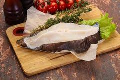 Raw wolffish steak stock photography