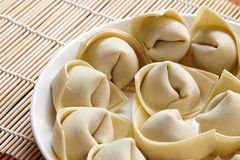 Raw wonton Stock Photography