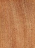 Raw wood. Raw panel of oak wood Royalty Free Stock Images