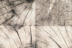 Raw wood background Stock Photography