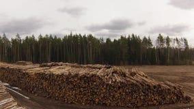 Raw wood storage Stock Photo