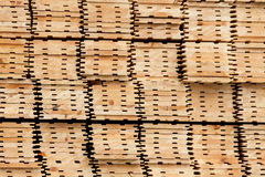 Raw wood timber. New dry raw wood timber Royalty Free Stock Photo