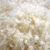 Raw Wool. Background. Also softness, warmness concept Royalty Free Stock Images