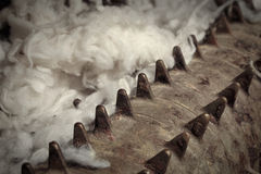 Raw wool Stock Photos