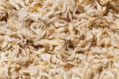 Raw wool of sheep of beautiful Caucasian mountains in the lesser Caucasus region Stock Photography