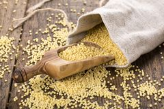 Yellow millet groats stock photography