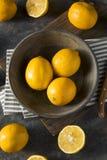 Raw Yellow Organic Meyer Lemons Stock Images