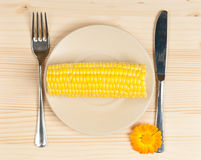 Raw young sweetcorn Royalty Free Stock Photography