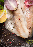 Raw Zander Fish fillet preparation with onion, lemon and pepper Stock Image