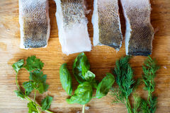 Raw zander fish fillets with various herbs, wooden background. Royalty Free Stock Photo