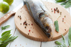 Raw zander and spices on a cutting board, fish Stock Images