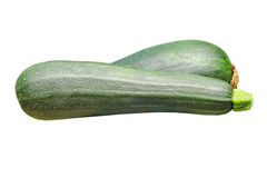 Raw zucchini vegetable.Isolated. Stock Images