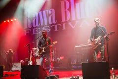 Rawa蓝色节日2014年:罗伯特伦道夫&家庭带 库存图片