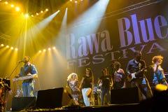 Rawa蓝色节日2014年:罗伯特伦道夫&家庭带 库存照片