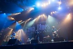 Rawa蓝色节日2014年:罗伯特伦道夫&家庭带 免版税库存图片