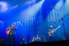 Rawa蓝色节日2014年:肖恩Holt &泪珠 库存图片