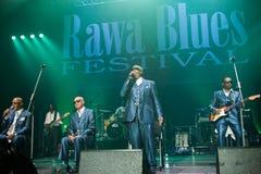 Rawa蓝色节日2014年:阿拉巴马的瞎的男孩 库存照片