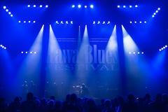 Rawa蓝色节日2014年 库存照片