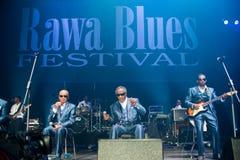 Rawa błękitów festiwal 2014: Niewidome chłopiec Alabama Zdjęcia Royalty Free