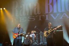 Rawa błękitów festiwal 2014: Shawn Holt & Teardrops Zdjęcia Royalty Free