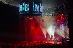 Rawa-Blau-Festival 2014 Lizenzfreie Stockbilder
